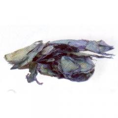 [특가판매]Paper Perfect Accent-PPF11 Blue Petals