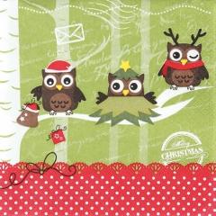 611309-Dressed up Owls 넵킨페이퍼(20매)