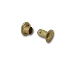 1278-21 X-Small Rapid Rivets Brass Plate 1000/pk