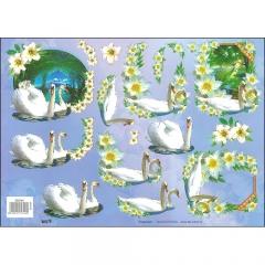 Animals/Wildlife-572742